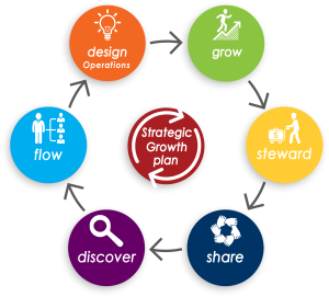 7 Step Growth Strategy