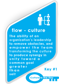 flow-Culture Synergy Team Building